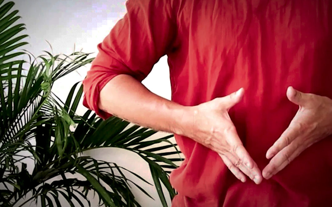 Qi Gong Foundations (5.5hrs)